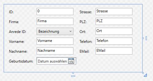 Das Page-Element mit den Detaildaten eines Kundendatensatzes in der Entwurfsansicht