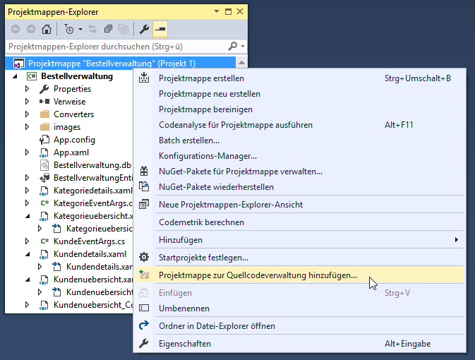 Hinzufügen der Projektmappe zu einer Quellcodeverwaltung