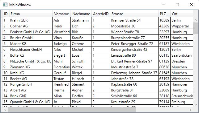 DataGrid mit allen Kundendaten